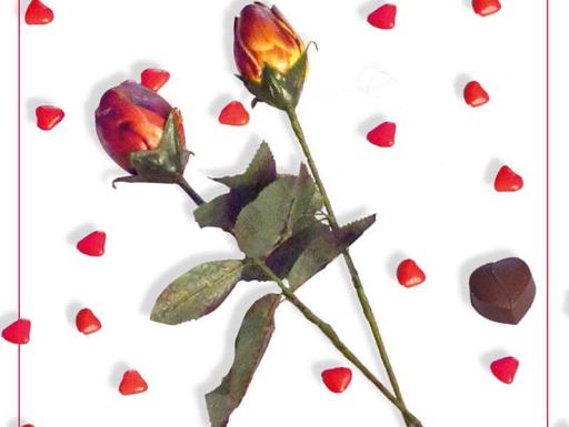Rose en chocolat 6,90€