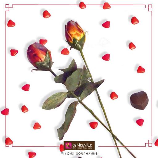 Une rose en chocolat pour ma maman